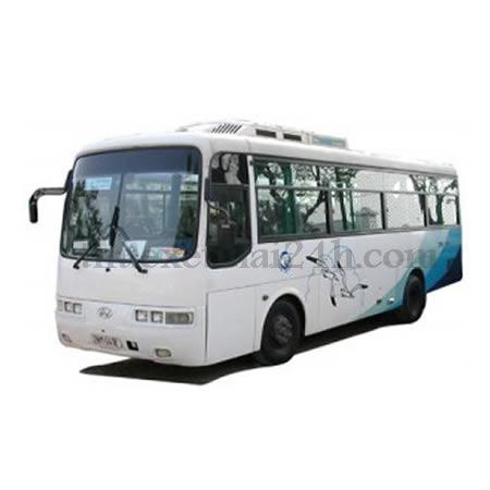 Cho thue xe tu lai Hyundai Aero Town 29 cho